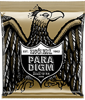 Paradigm 80/20 Acoustic Strings